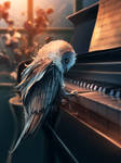 Piano Lesson by AquaSixio