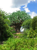 Tree of Life at a Distance by TheStockWarehouse