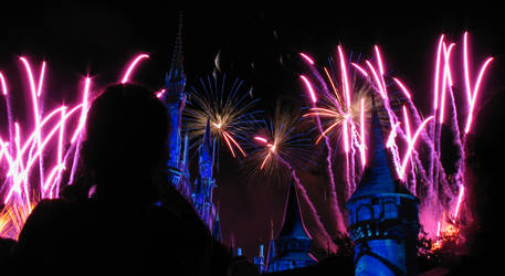 Castle Fireworks Show IMG 1080