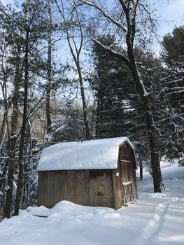 Rustic Barn in the Snowy Woods