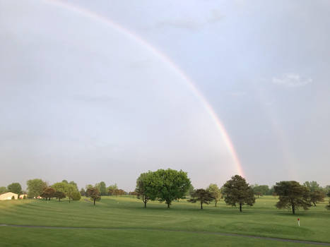 Rainbow IMG 3956