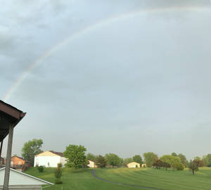 Rainbow IMG 3963
