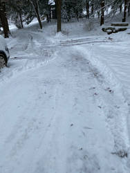 Snow IMG 1231