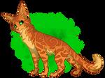 Warrior Cats Challenge #1 - Firestar (Redo)