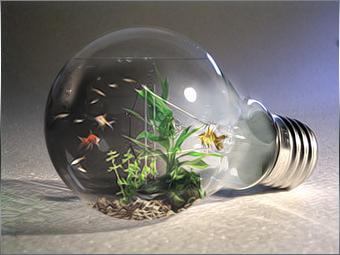 Aqua Bulb by mceric
