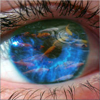 Fisheye by mceric