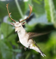 Flying Deer by mceric