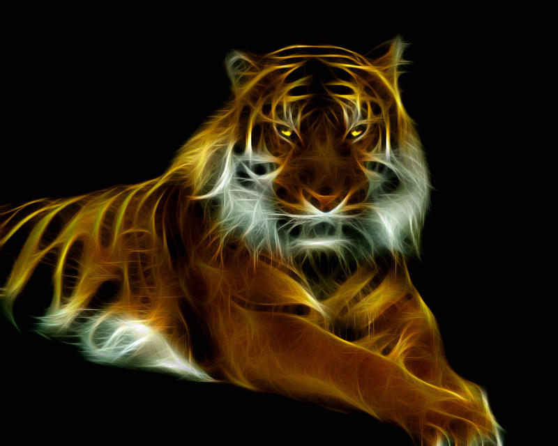 Glowing Tiger by mceric