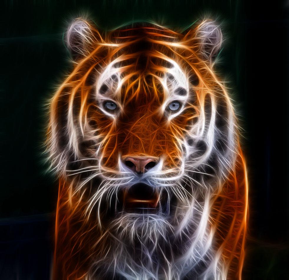 tiger fractal cats e - photo #8