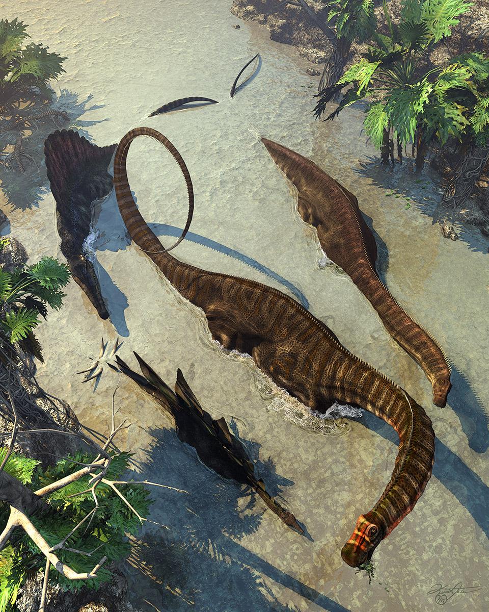 Apatosaurus From Above by KMIStudio