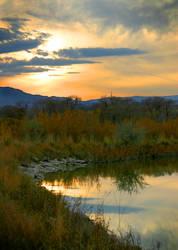 DW Marsh:  6261 by ktelge