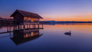 Ammersee | 6511