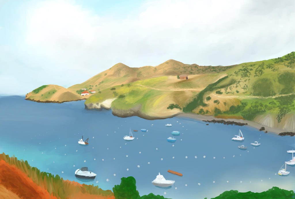 Catalina Island by Winter--Dove