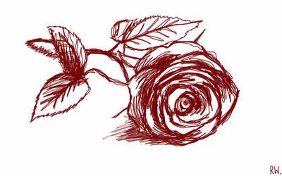 rose by Rhyn-Art