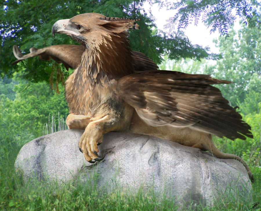 Infj your favorite mythical creature - A picture of a griffin the creature ...