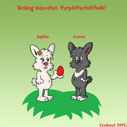 SA - Zuzmo and Sophie