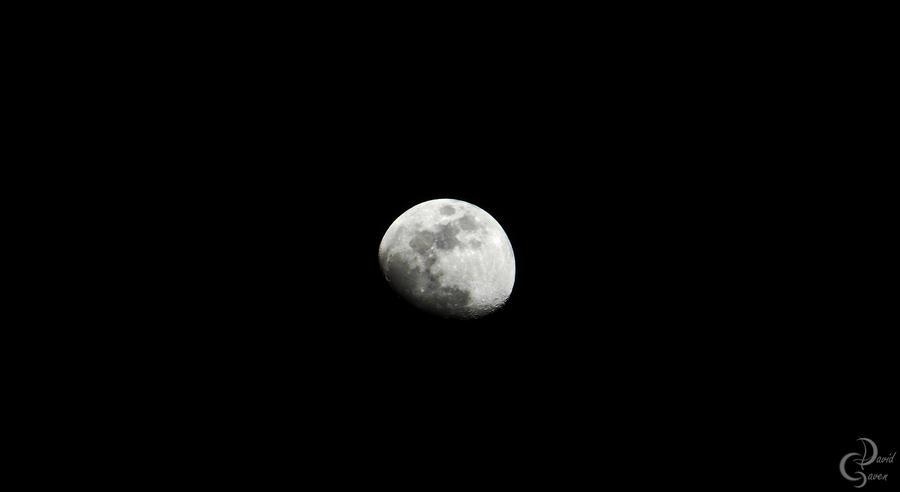 Just the beatifull moon by SadoNekoGAVEN