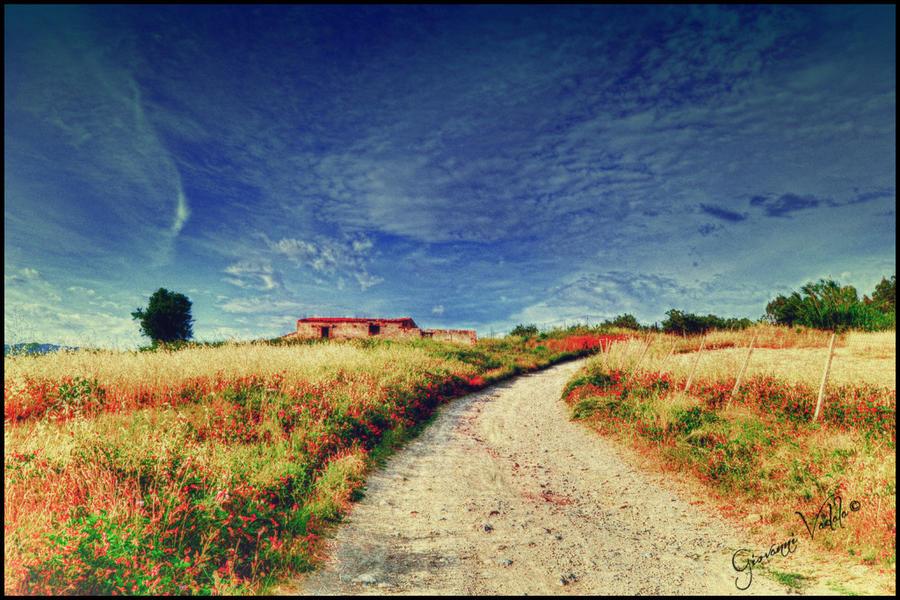 Wild House by JohnnyVadala