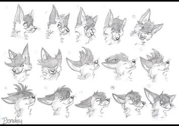 fox amination FRAMES by Bonday