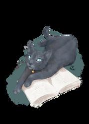 PET commission6