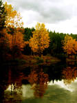 Serenity Of Fall