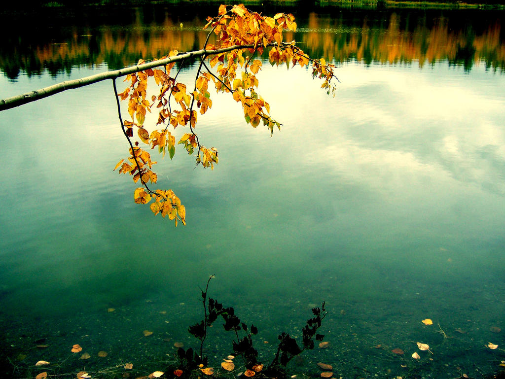 http://fc04.deviantart.net/fs36/i/2008/264/b/1/Fall_Reflections_by_Vethonwen.jpg