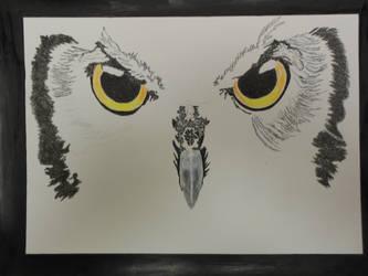 Owl WIP3