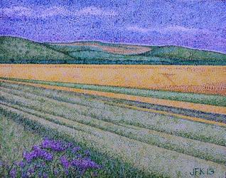 Plains of Dobrudja, Romania by jfkpaint