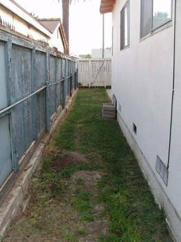 Yard Condition proof 12