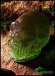 Candy Crystal Skull 1 by JasonMcKittrick