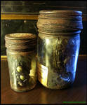 Starkweather-Moore Expedition Specimen Bottles