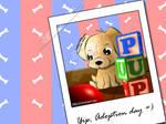 Yip, Adoption Day