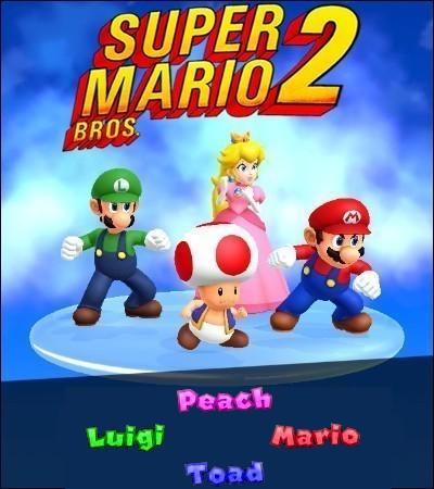 new super mario bros 2 guide pdf