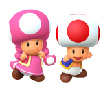 Toad and Toadette (MP10) 2
