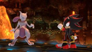 Mewtwo vs Shadow