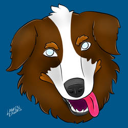 Australian Shepherd by LaurenDraws01