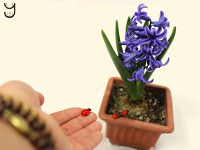 Spring ... ^__^