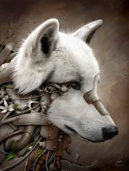 Wild 1 - The Wolf