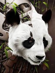 Wild 2 - The Panda
