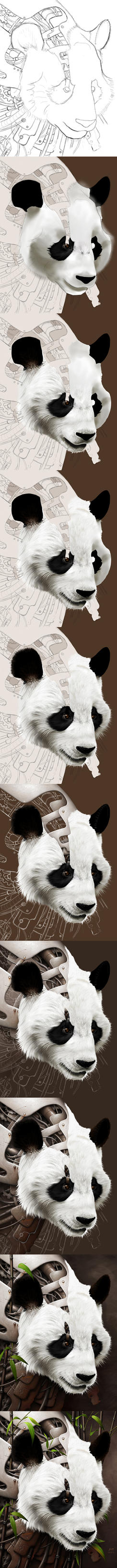 Wild 2 - The Panda - Steps by BenF