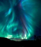 Aurora Dragon. by Trichardsen