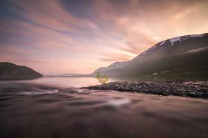 Sense the morning by Trichardsen