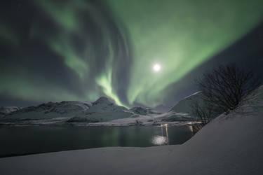 Northern delight by Trichardsen