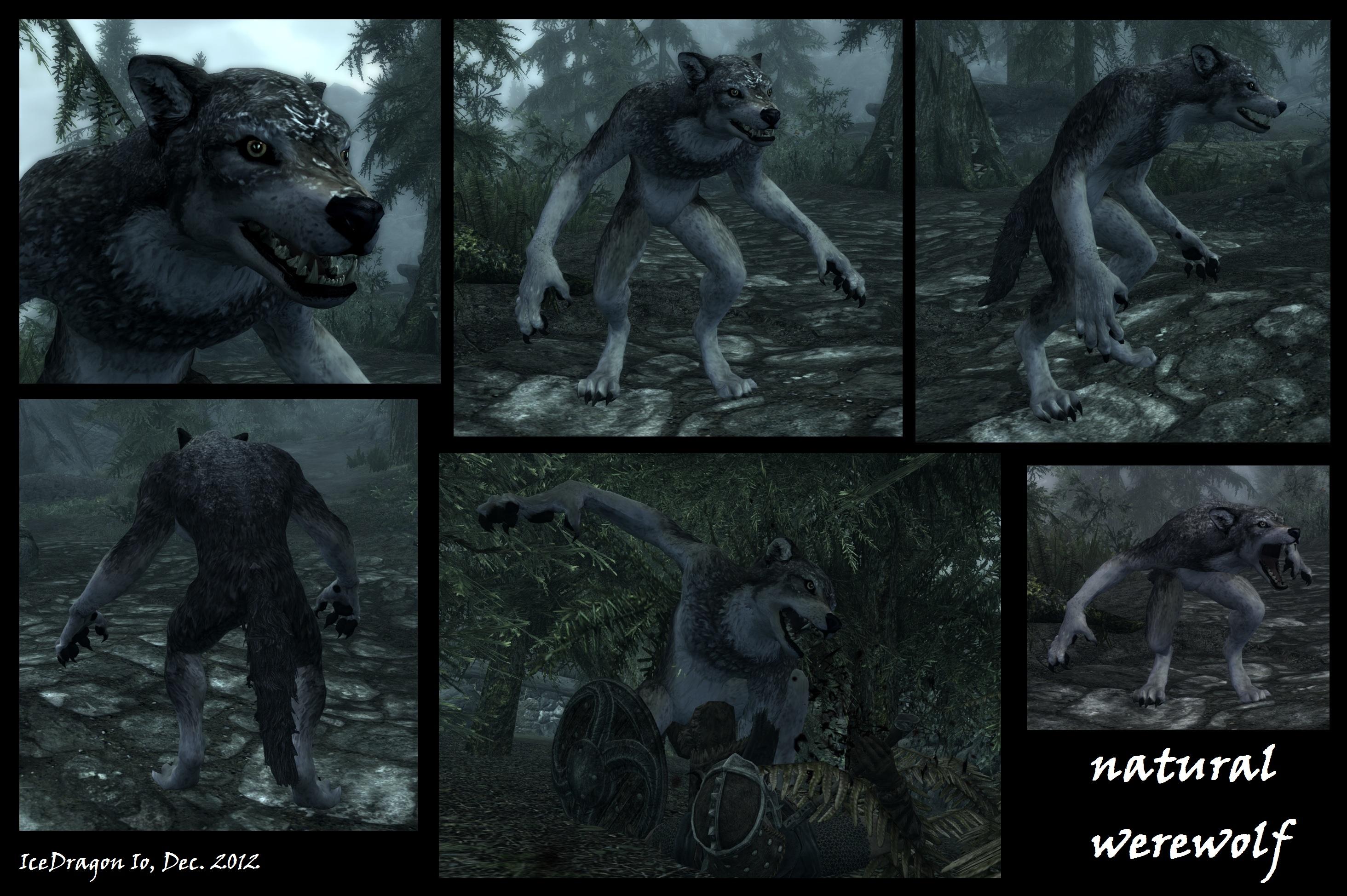 The Elder Scrolls V Skyrim Screenshot - WEREWOLF by IceDragon-Io on