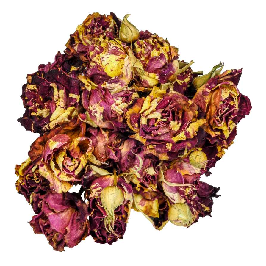 Bouquet of dead roses png by bunny with camera on deviantart bouquet of dead roses png by bunny with camera izmirmasajfo
