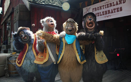 Silly old country bears