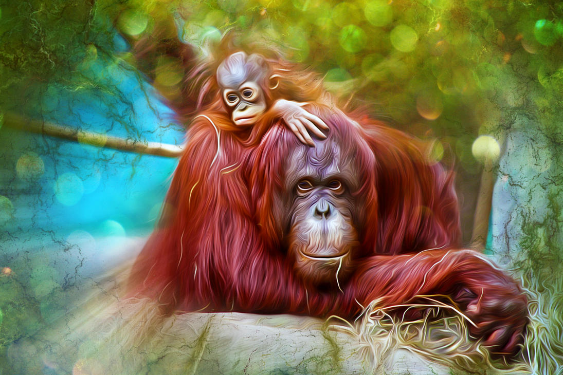 Orangutans Color by severianofilho