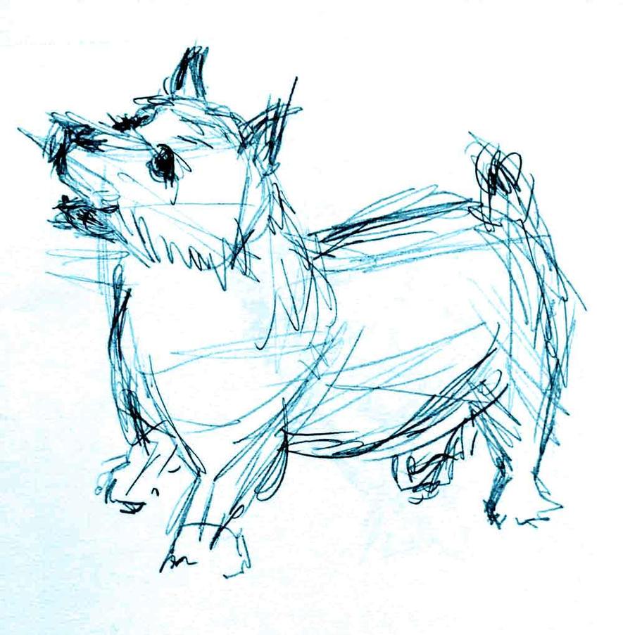 CairnTerrier by kaze-ranna