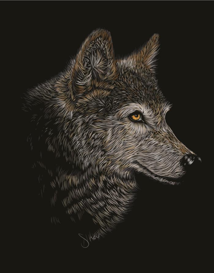 Wolf for Kovo by ChewedKandi