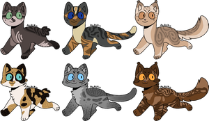 Cat adopts auction OPEN [4/6]